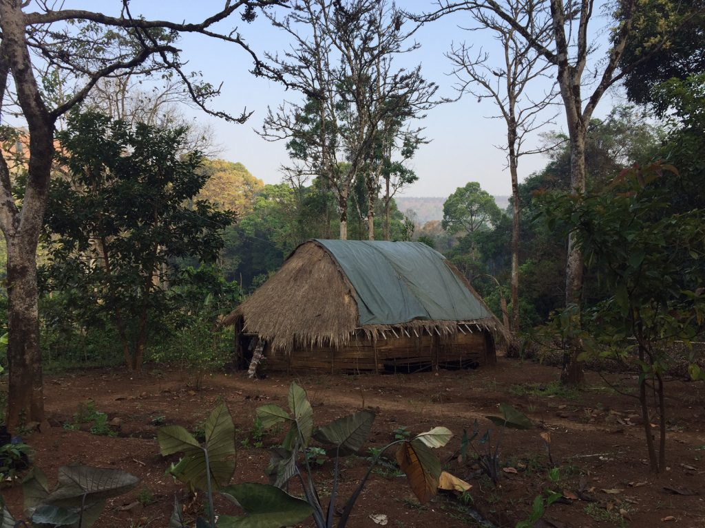 Eco lodge Mondulkiri