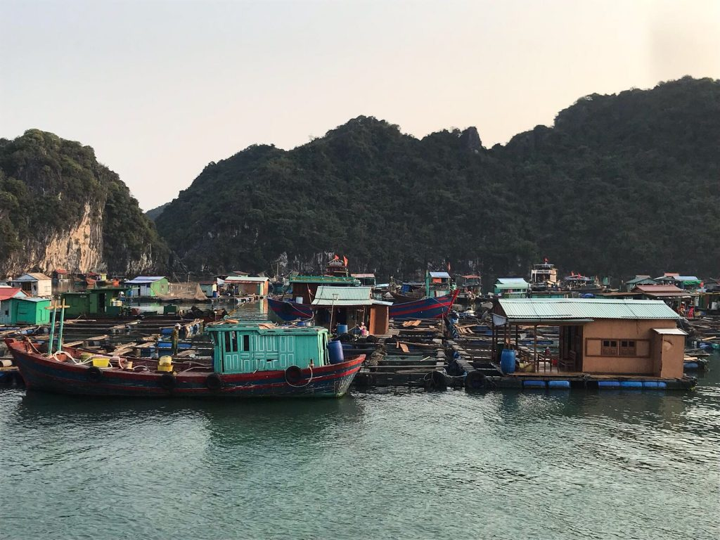 Cat Ba floating fishing village
