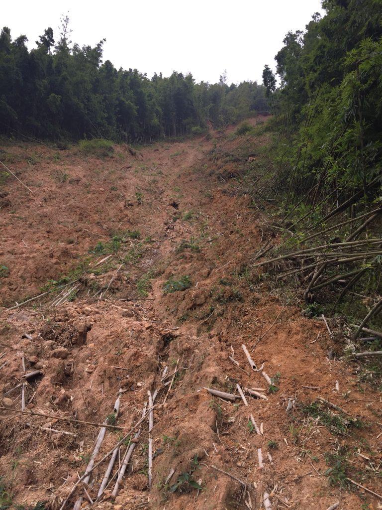 Landslide in Sapa
