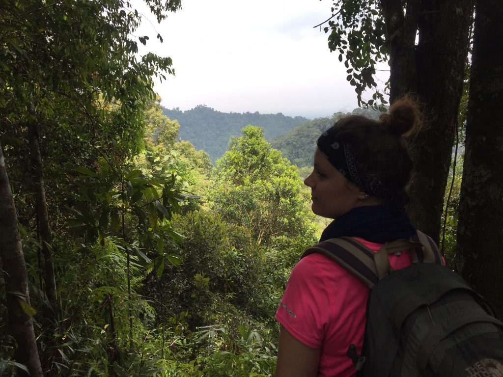 Gunung Leuser national park views